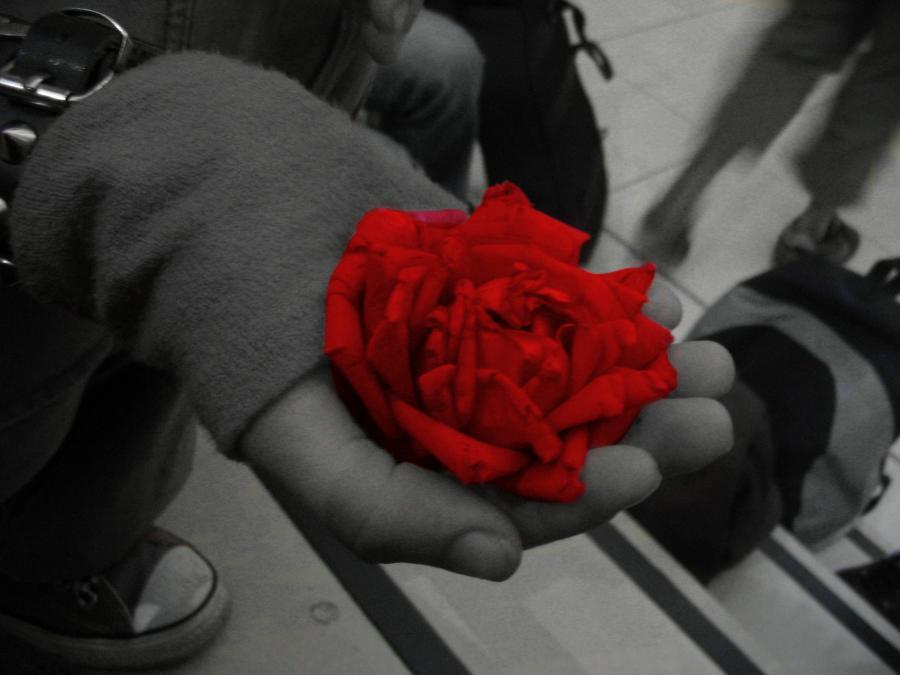 Rojo que te quiero rojo  25569_2ff9b531bb3047f5b4452fc46cc02dfa_large