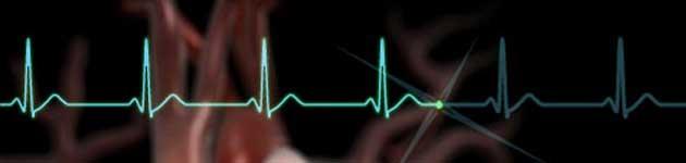 Zanimljive činjenice o muzici Srce