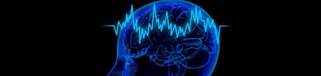 Neverovatne činjenica o našem telu Mozak