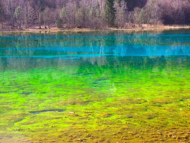 Najlepši nacionalni parkovi sveta Jezero-pet-cvjetova-1