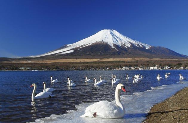 Najlepši nacionalni parkovi sveta Fuji-Hakone-Izu-8