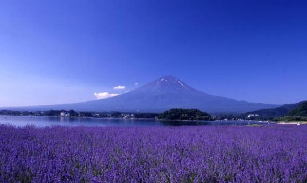 Najlepši nacionalni parkovi sveta Fuji-Hakone-Izu-9