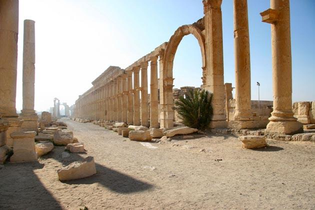 Zanimljivosti iz sveta arheologije Palmira-4