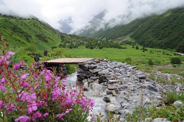 Najlepši nacionalni parkovi sveta Dolina-cvijeca-4