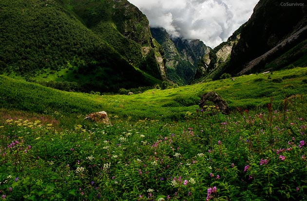 Najlepši nacionalni parkovi sveta Dolina-cvijeca-5