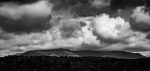 Paysage/ Campagne / Montagne - Page 12 2020_06_8__150_3