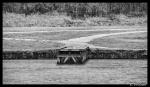 Noir et Blanc / Sépia / Désaturation partielle / Traitements divers - Page 11 2021_01_01__150_50