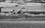 Noir et Blanc / Sépia / Désaturation partielle / Traitements divers - Page 22 2021_05_24__150_20