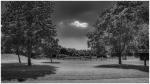 Noir et Blanc / Sépia / Désaturation partielle / Traitements divers - Page 24 2021_07_24__150_70