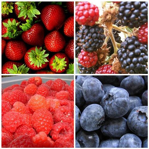 Voće i povrće Summer-seasonal-fruit-and-vegetables