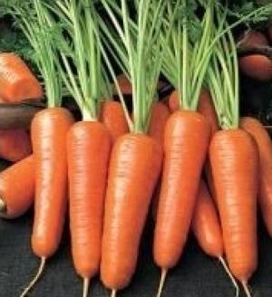 Чтобы был богатым урожай - Страница 2 Mork_0