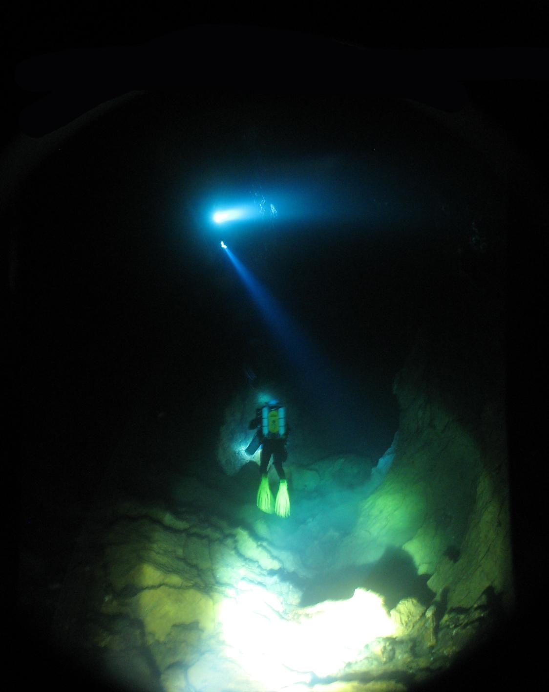 MARINE - Débuter en photo sous-marine : vos conseils IMG_4492web_4mgh71vl