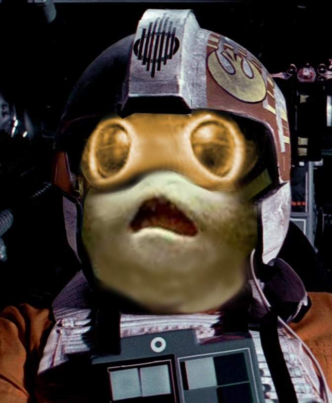 Porg-hub. The Porg appreciation thread. 29d72175238299abdc349cbd1b6882c8c3718c46_hq
