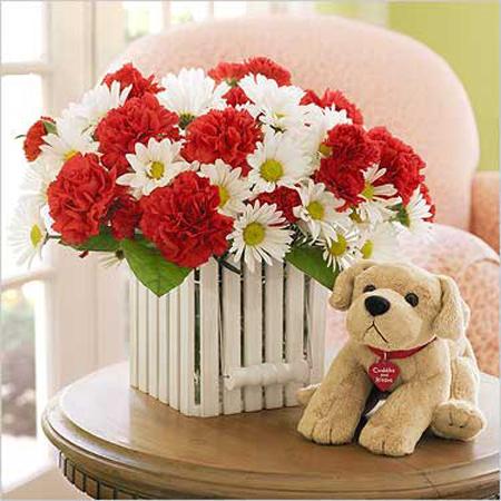 صور مزهريات مصممة بديكورات رائعة .. Bmixdog_flower_xxl