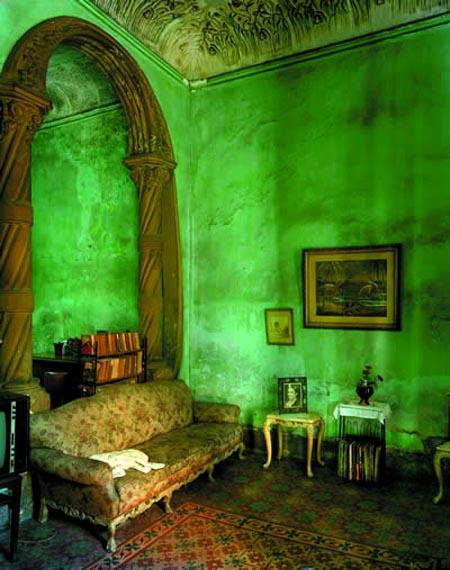 ديكور اخضر 5_30