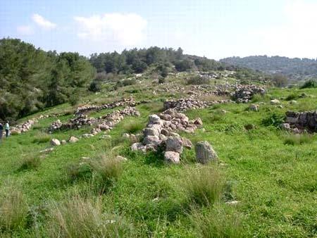 موسوعة الصور لفلسطين الحبيبة 11_18
