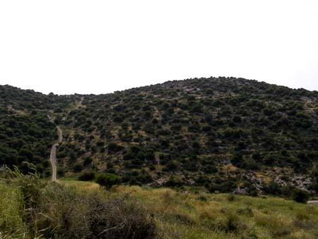 موسوعة الصور لفلسطين الحبيبة 15_17
