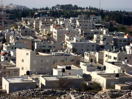 موسوعة الصور لفلسطين الحبيبة 21_14