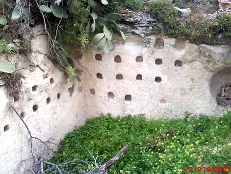 موسوعة الصور لفلسطين الحبيبة 22_11