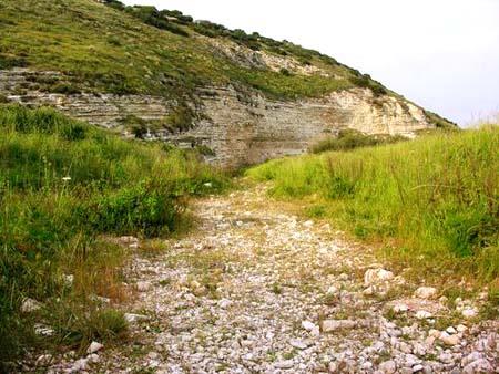 موسوعة الصور لفلسطين الحبيبة 2_26