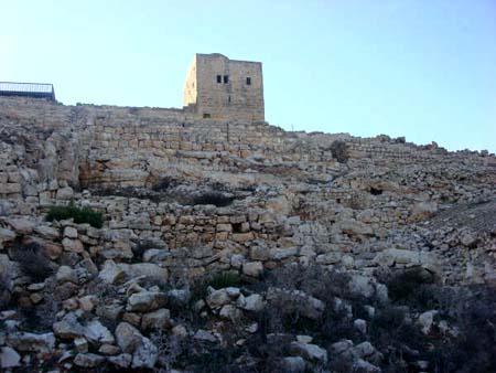 موسوعة الصور لفلسطين الحبيبة 34_5