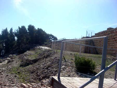 موسوعة الصور لفلسطين الحبيبة 6_43