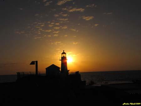 موسوعة الصور لفلسطين الحبيبة 10_28