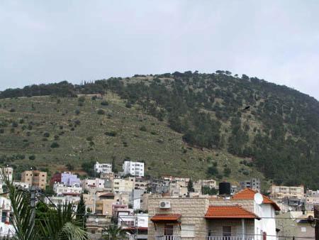 موسوعة الصور لفلسطين الحبيبة 17_13
