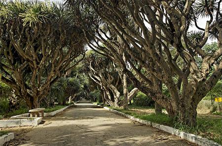 الجزائر من بين أجمل 10 بلدان في العالم من حيث جمال الطبيعة  Untitled-85