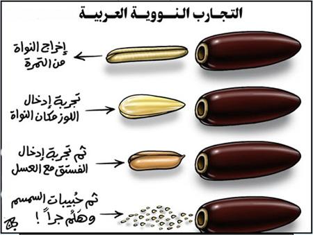الفرق بيت العرب و الغرب. 4