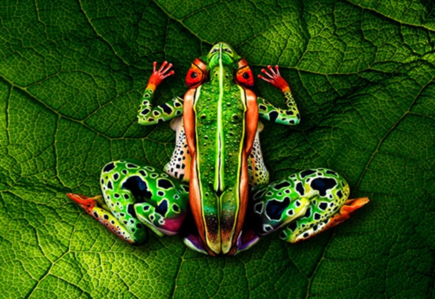 Baš neobično Frog-johannes-stoetter-bodypainting-SLIKA-1