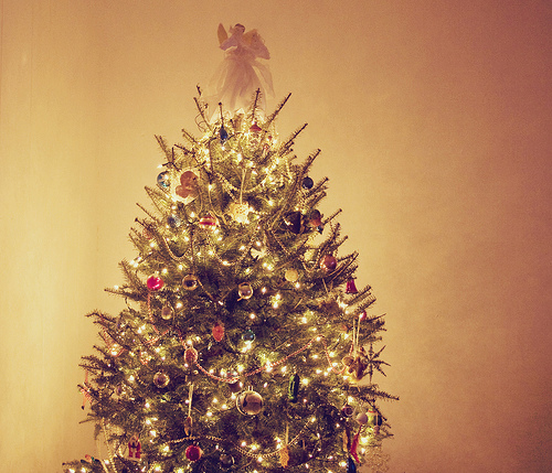 Christmas! - Page 3 Tumblr_kup9f4vsnx1qzsw4qo1_500