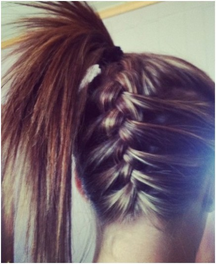 Hair Style. - Page 3 Braid-Into-Ponytail-Long-Hairstyles