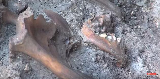 Mont Saint-Michel : une incroyable découverte relance une vieille légende ! Par Axel Leclercq                            Necropole-mont-saint-michel-archeologie-3