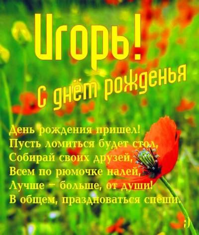 ВОСТОЧНО-ЕВРОПЕЙСКАЯ ОВЧАРКА ВЕОЛАР ЛОКИ - Страница 5 Igor-3