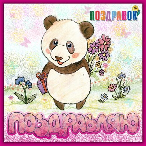 Поздравляем с Днем Рождения Светлану (Светлана Салимовна) Pozdravlyayu-panda