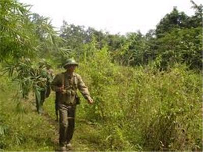 Thư Bộ đội cụ Hồ gửi anh lính Miền Nam 43df29c4315e452da43e3703c314d6cc