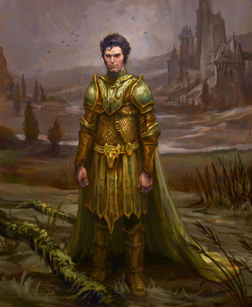 La Historia del Caballero de la Luz Young_officer_by_dunechampion-d45xz2n