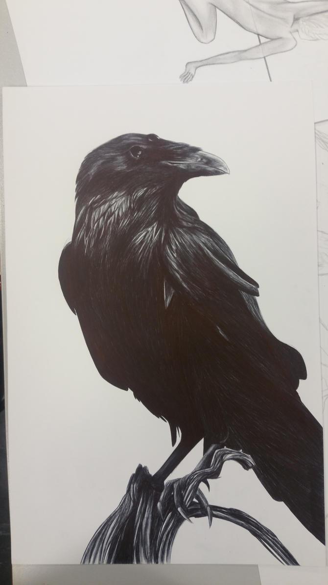 Présentation de killashandra Three_eyed_raven___pen_by_sohowolf-d9hqpa3