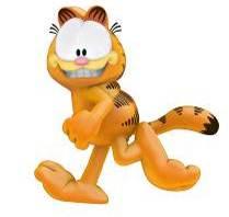 Športové a telesné zdravie Garfield