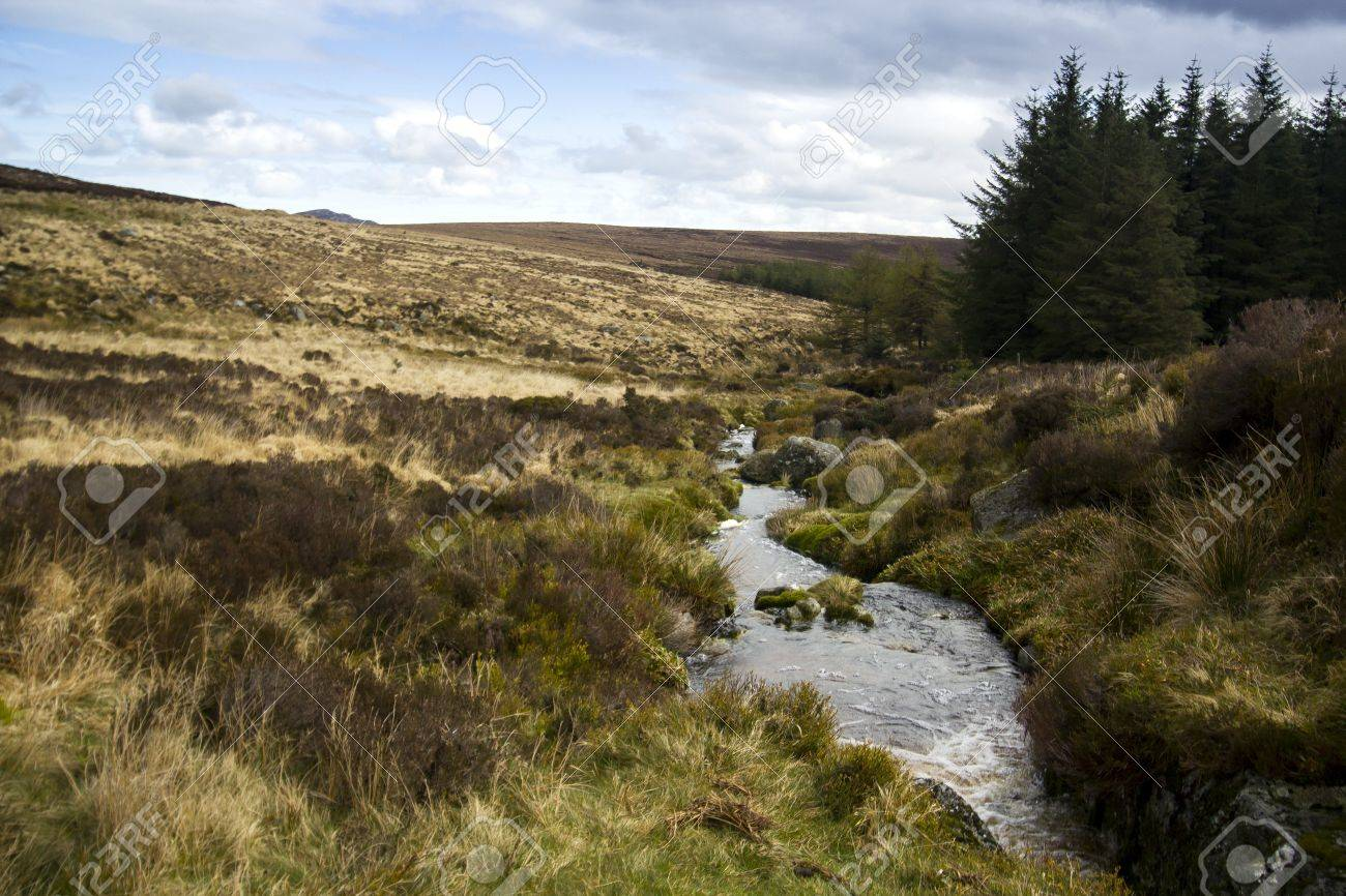 [OPEN] - Just around the riverbend 14482527-Small-river-landscape-inside-Wicklow-Park-and-Sally-Gap-Ireland-Stock-Photo