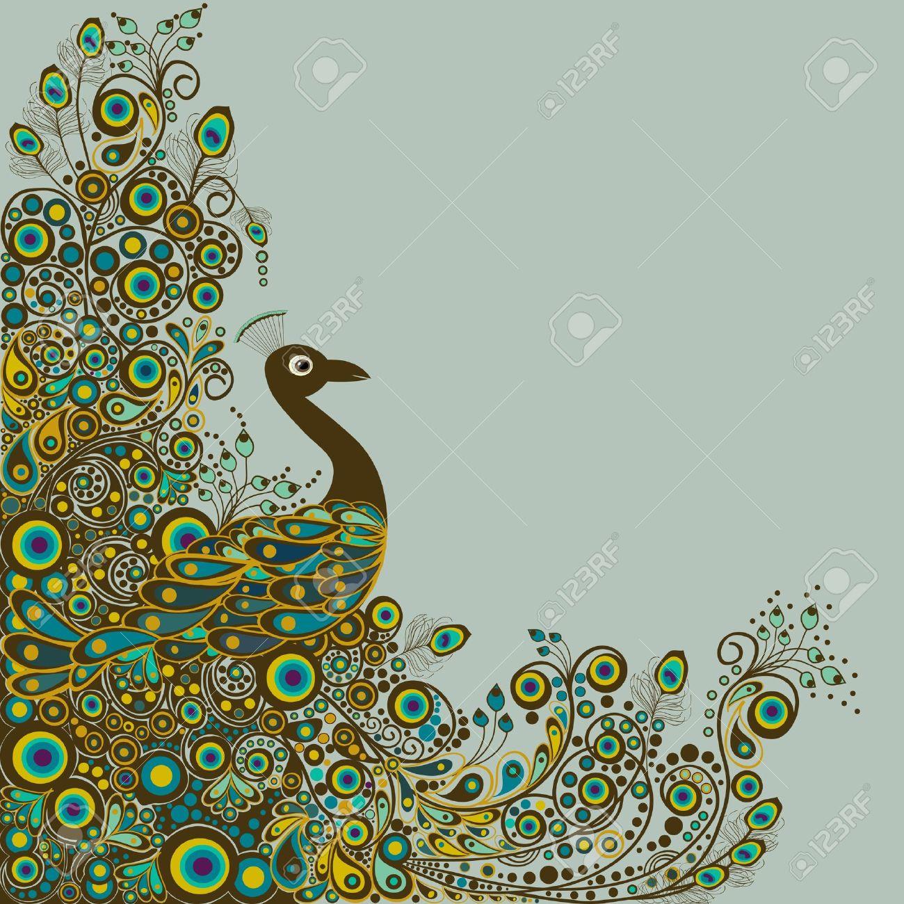 صور الطاوس فلاشية  18812629-Peacock-card-Stock-Vector-peacock-indian-feather