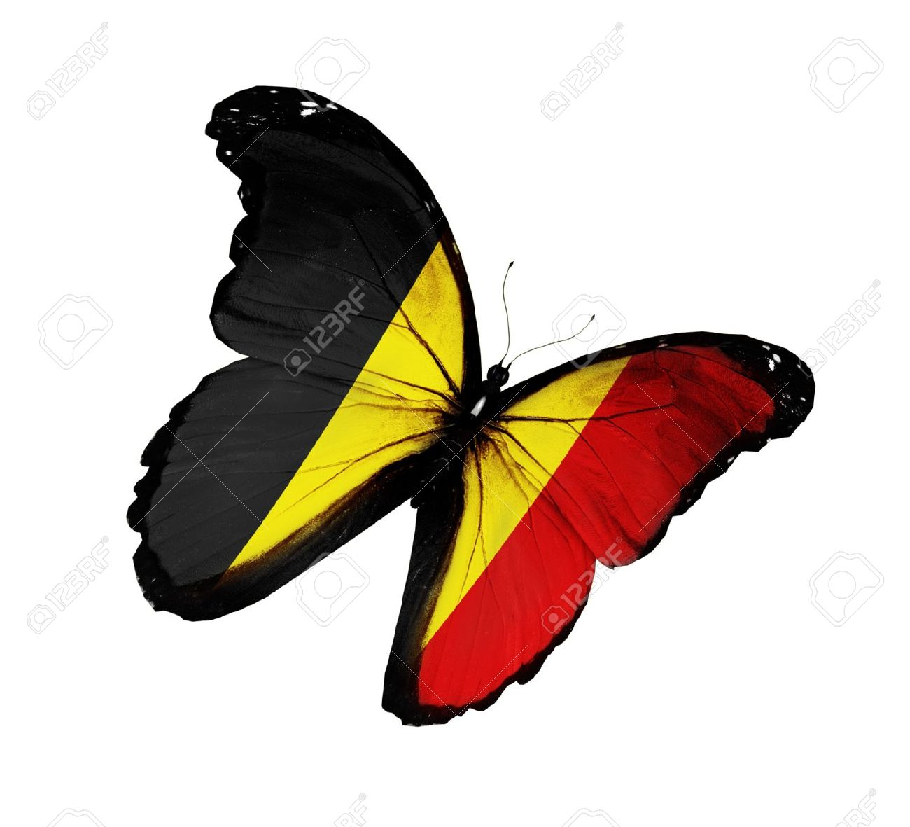 PM´s Prediction Game Season VII | year 2015 - Page 2 14576346-belgian-flag-butterfly-flying-isolated-on-white-background