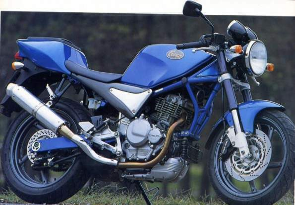 Un nouveau en Superbike????? Suzuki-Goose-350-1992