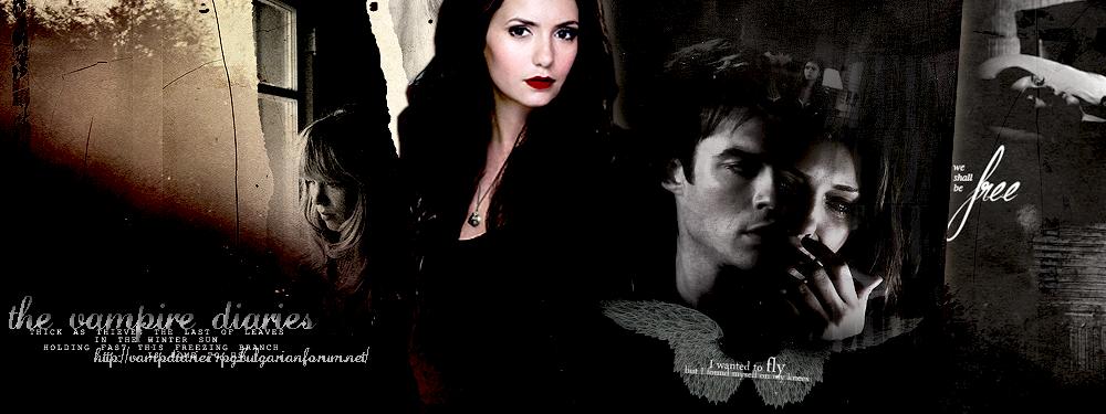 • the vampire diaries •