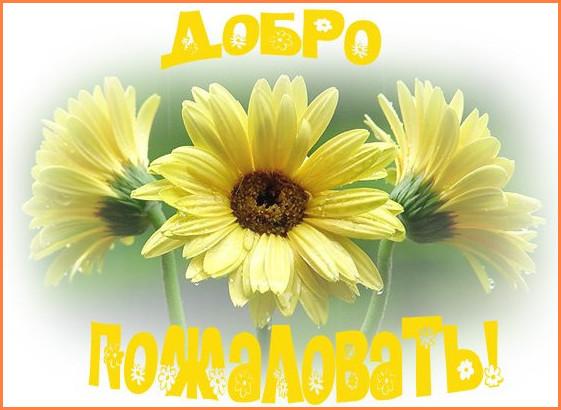 Добро пожаловать!  - Страница 14 2012-12-03_2002183
