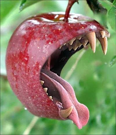 Coppia 5: (LACRIMADISANGUE e VIAGGIATORE): gara in coppia (fuori classifica)  Evil_apple