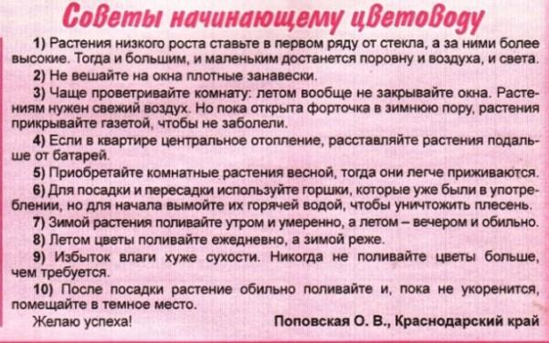 статьи о растениях из  газет и журналов 68136324