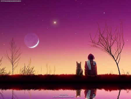 Le monde à ma fenêtre T-coucher_de_soleil
