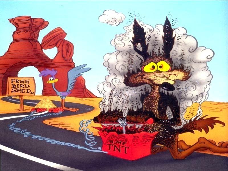 Ma cosa sarà mai? - Pagina 11 Wile-e-coyote-photos-251